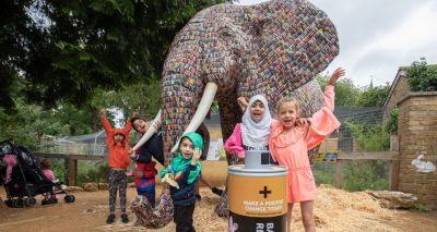 Life-sized elephant created from thousands of recycled batteries