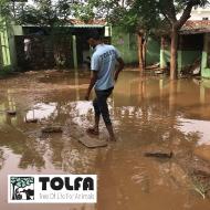 Atypical monsoon precipitates crisis for animal rescue hospital