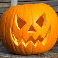 Feed leftover pumpkin to animals, urges RSPCA