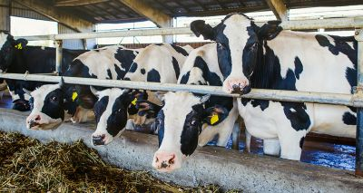 Farming and agriculture to feature at congress