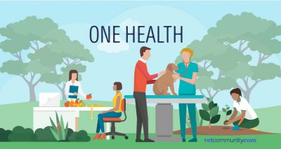 Report highlights crucial role of vets to One Health agenda