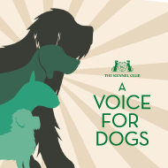 Kennel Club launches 'Voice for Dogs' manifesto