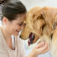 Bristol Vet School seeks prospective dog owners