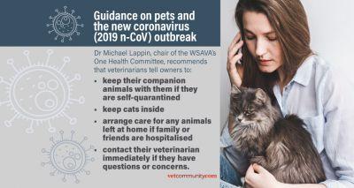 WSAVA issues new coronavirus guidance