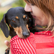 Dachshund and owner