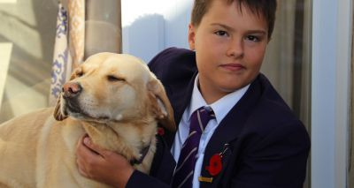Dog employed as therapist at Bromley school