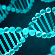 Study reveals flaws in long-read DNA technology