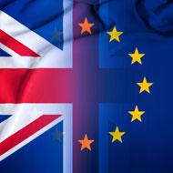 RCVS to recognise European vet degrees