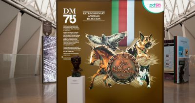 'Animal VC' exhibition goes on display to the public
