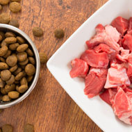 Study highlights risks of feeding a raw meat diet