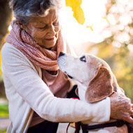 Dog and human osteoarthritis link - study