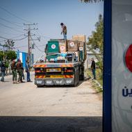 Vets complete Gaza zoo rescue mission