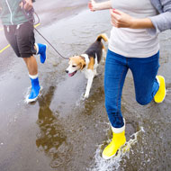 Dog owners 'more likely to meet exercise guidelines'