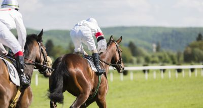 Horse racing body changes flu vaccination rules