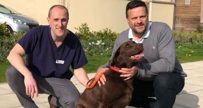 Veterinary hospital first to trial new ankle surgery