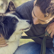 Dogs 'mirror stress levels of their owners'