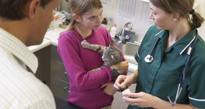 Nominations open for Blue Cross Veterinary Nurse of the Year award
