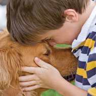 Osteosarcoma genetically similar in dogs and human children - study