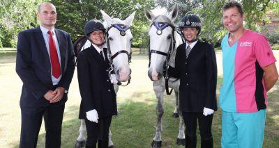 Met Police horses honoured for outstanding devotion