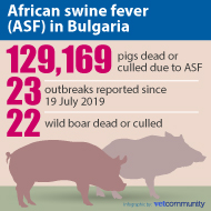 ASF: Nearly 130,000 pigs culled in Bulgaria