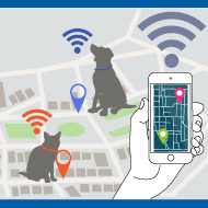 Pet trackers gather more data about owners than pets - study