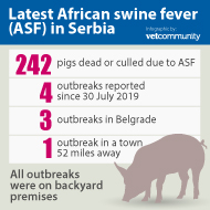 ASF: Serbia reports first outbreaks