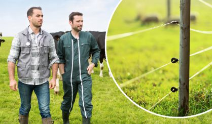 'Talk to clients about electric fences' - BVA