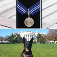 US Secret Service dog gets animal OBE
