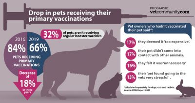 Pet vaccinations fall by 18 per cent