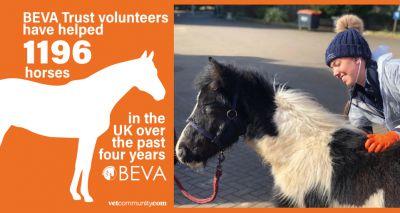 Volunteers help over 1,000 UK horses