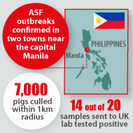 Philippines confirms first outbreaks of ASF