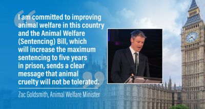 Animal Welfare Bill reintroduced