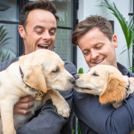 Ant and Dec back new Guide Dogs appeal