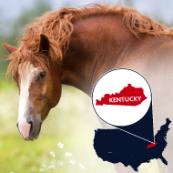 West Nile Virus confirmed in Kentucky horse
