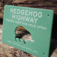 Housebuilder to roll out hedgehog 'highways'