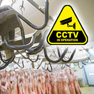 Call for compulsory CCTV in Welsh slaughterhouses
