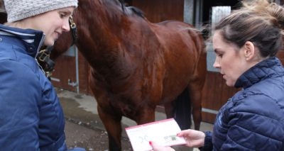 Traffic light scheme to tackle equine obesity