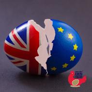 British Hen Welfare Trust raises concerns about Brexit uncertainty