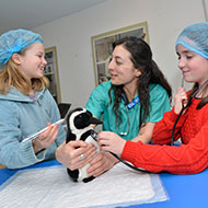 ZSL Whipsnade to run Vets in Action week for children
