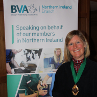 New president takes on dual BVA NI and NIVA role