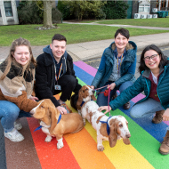 Vets unveil new rainbow crossing in support of LGBT+ community