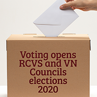 RCVS and VN Councils elections get underway