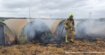 Pig starts fire after eating pedometer