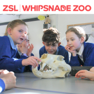 ZSL Whipsnade launches educational outreach programme