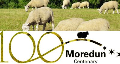 Moredun Foundation celebrates 100 years of disease research