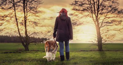 RSPCA urges local authorities to reduce restrictions on dog walkers