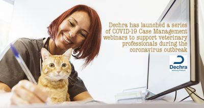New Dechra webinar series available for vet professionals