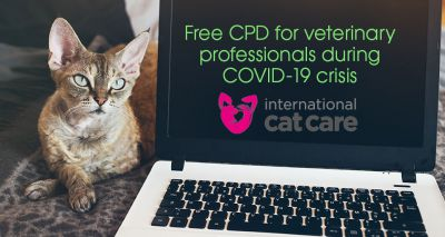 ISFM offers vets free CPD during COVID-19 lockdown