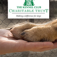 Kennel Club Charitable Trust reopens emergency relief fund
