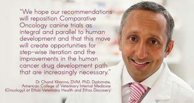 Manuscript calls for collaborative approach to drug development
